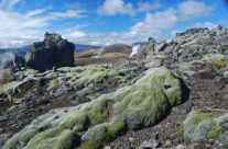 Iceland – steaming geysirs near Hrafntinnusker mountain hut