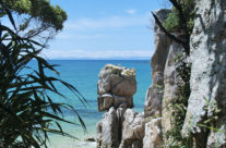 New Zealand – Abel Tasman NP