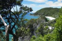 New Zealand – Abel Tasman