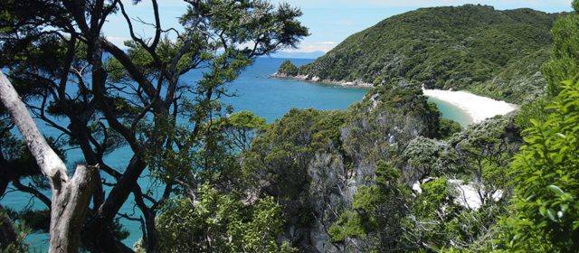New Zealand – Abel Tasman