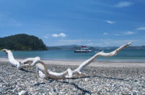 New Zealand – Bay of Islands