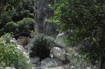 Walking tours to the interior, Sardinia