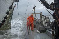 Stormy Wadden Sea
